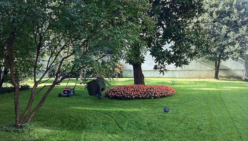 Manutenzione giardini pulisprintsrl for Manutenzione giardini